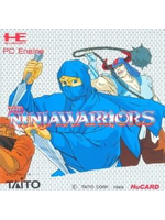 The Ninja Warriors video game