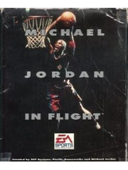 Michael Jordan in Flight