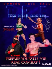 Thea Realm Fighters