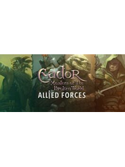 Eador. Masters of the Broken World - Allied Forces