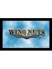 Wing Nuts: Battle in the Sky