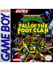 Teenage Mutant Hero Turtles: Fall of the Foot Clan