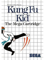 Kung Fu Kid (video game)
