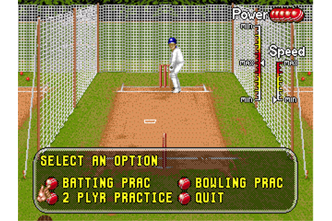 Download Brian Lara Cricket '96 - My Abandonware