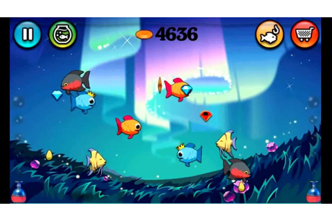 Fish Tank Game - free - YouTube
