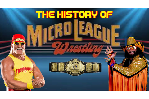 the History of WWF Microleague Wrestling - The first WWF ...