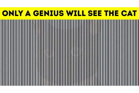 BEST OPTICAL ILLUSIONS TO KICK START YOUR BRAIN - YouTube