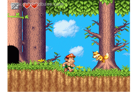 Adventure Island Free Download ~ PC GAMES