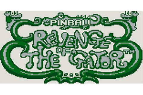 Pinball: Revenge of the 'Gator Download Game | GameFabrique