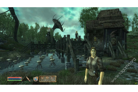 The Elder Scrolls IV: Oblivion - Game of the Year Edition ...