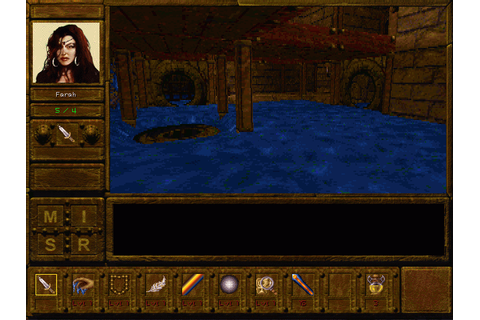 Descent To Undermountain (1997) by Dragon Play MS-DOS game
