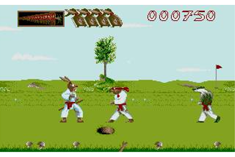 Ninja Rabbits Download (1993 Arcade action Game)