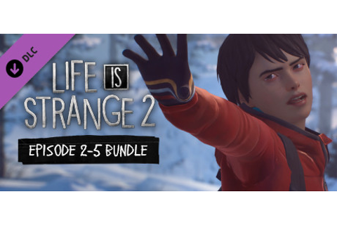 Life is Strange 2 - Episodes 2-5 bundle on Steam