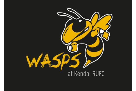 NO WASPS GAME THIS SUNDAY - News - Kendal Hornets RUFC