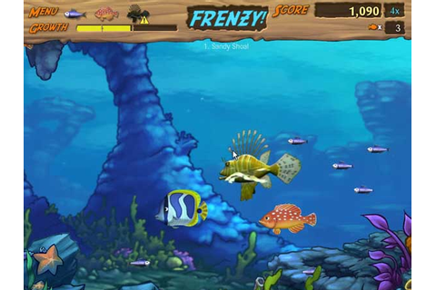 Free Download PC Games and Software: Feeding Frenzy 2 Game