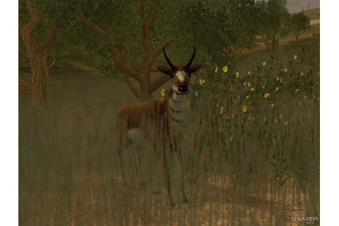 Cabela's Big Game Hunter: 2004 Season (2003 video game)