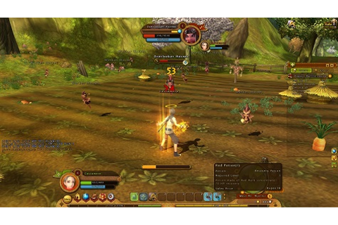 Can It Fill the Shoes of the Original? - Ragnarok Online ...