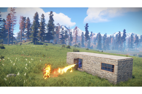 Review: Rust