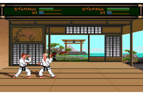 Budokan: The Martial Spirit (1989) MS-DOS game