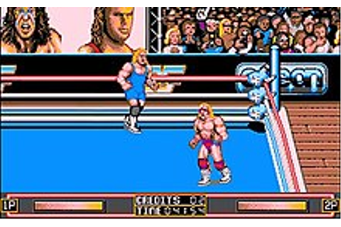 WWF WrestleMania (1991 video game) - Wikipedia