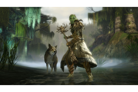 Meet the Druid: Ranger's Elite Specialization : Guildwars2