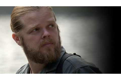 What Happens To Pollux In 'Mockingjay'? The Book Gives ...
