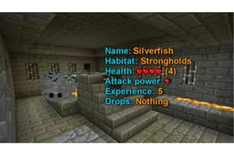 Interview with a Silverfish Minecraft Blog
