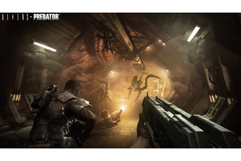 Amazon.com: Aliens vs Predator - Xbox 360: Video Games