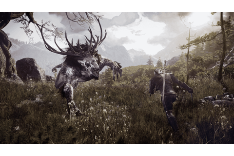 The Witcher 3 Wild Hunt Full Version PC Activation ...