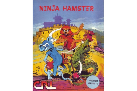 The Best and Worst of '80s Ninja Video Games | Den of Geek