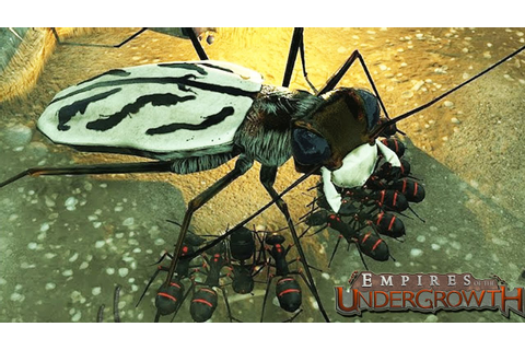 MASSIVE BUG ATTACK! Sim Ant Game (Empires of the ...