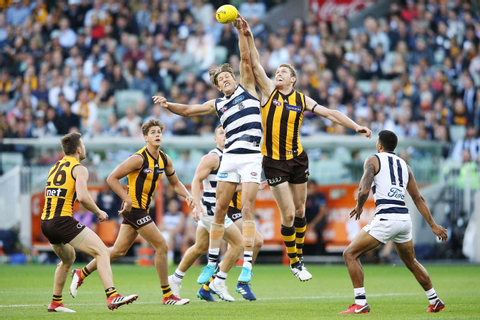 AFL Round 2 in Review | Odds