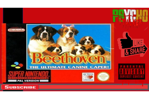 BEETHOVEN 2nd SNES - YouTube