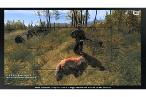 The Hunter 2013 Multiplayer Red Fox Hunting 1080 HD - YouTube
