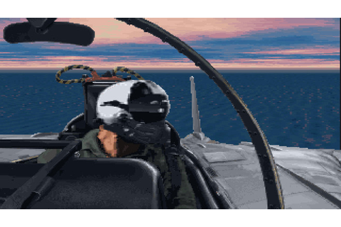 Fleet Defender: The F-14 Tomcat Simulation | wingamestore.com