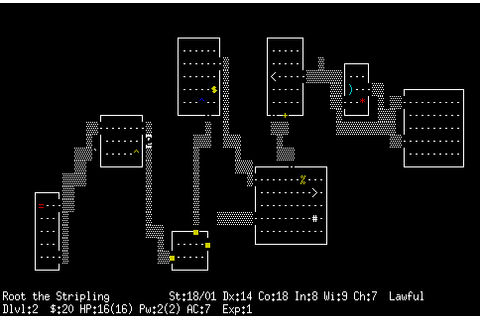 nethack | Second Person Shooter