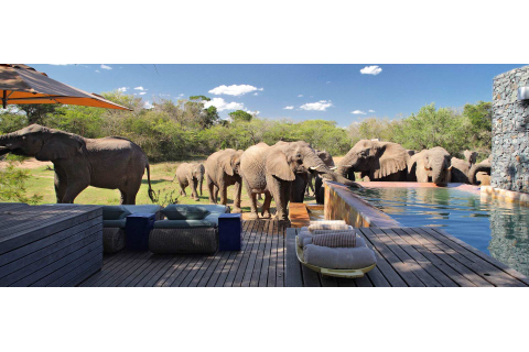 South Africa Bucket List | Venuelust