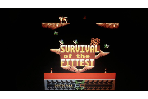JOUST 2 Survival Of The Fittest - Single Credit High Score ...