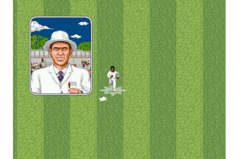 Brian Lara Cricket '96 (1996) by Audiogenic Mega Drive game