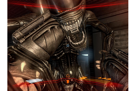 Aliens vs Predator PC game review