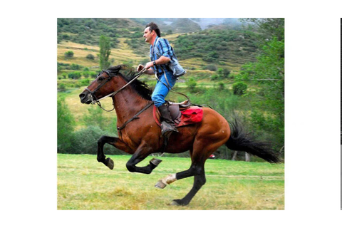 horse riding galloping - YouTube