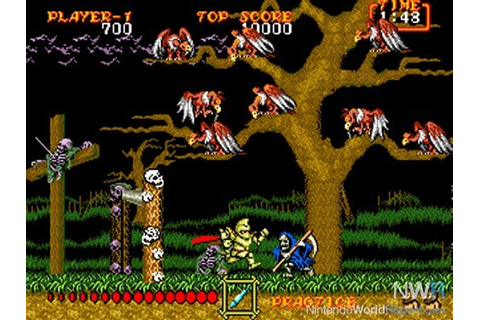Ghouls 'n Ghosts (USA, Europe) ROM