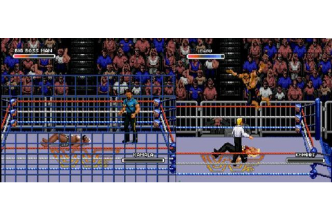 Image - WWF Rage in the Cage (Game).1.jpg | Pro Wrestling ...
