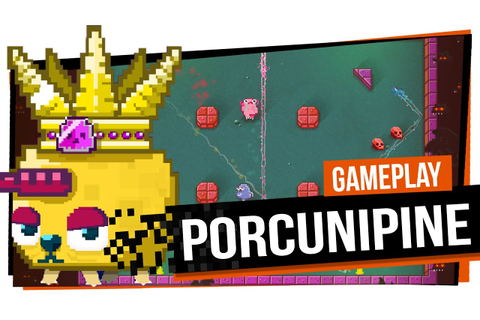 Porcunipine - Gameplay - YouTube