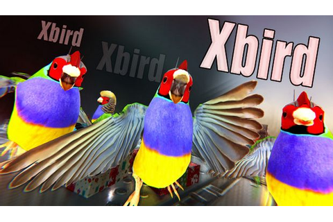 Xbird Free Download « IGGGAMES