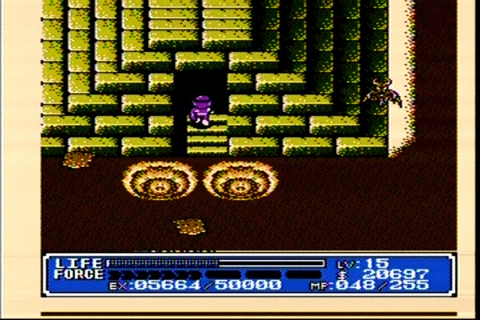 The RPG Consoler: Game 15: Crystalis (NES) - Finished!