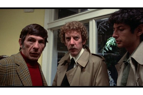 Picture of Invasion of the Body Snatchers (1978)