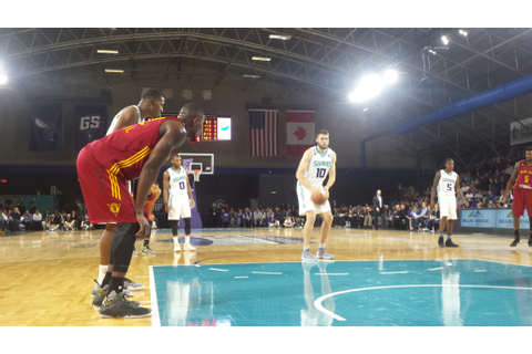 Sportsball: Swarm stung by Mad Ants in inaugural match ...