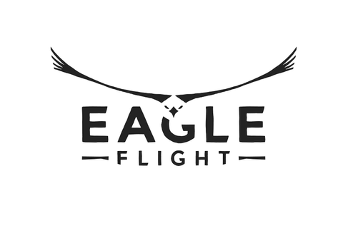 It Is Time To Soar - Eagle Flight Comes To VR Platforms ...