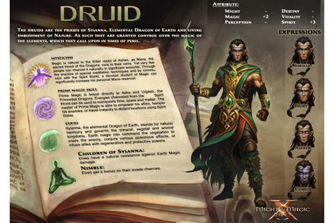Druid (MM10) | Might and Magic Wiki | FANDOM powered by Wikia